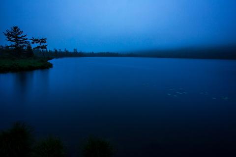 Labrador Pond Before Dawn