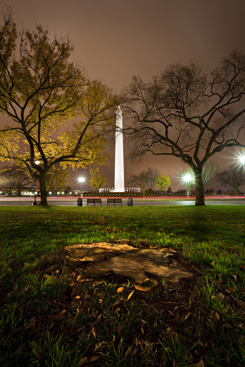 """""""Washington Monument Park View"""""""