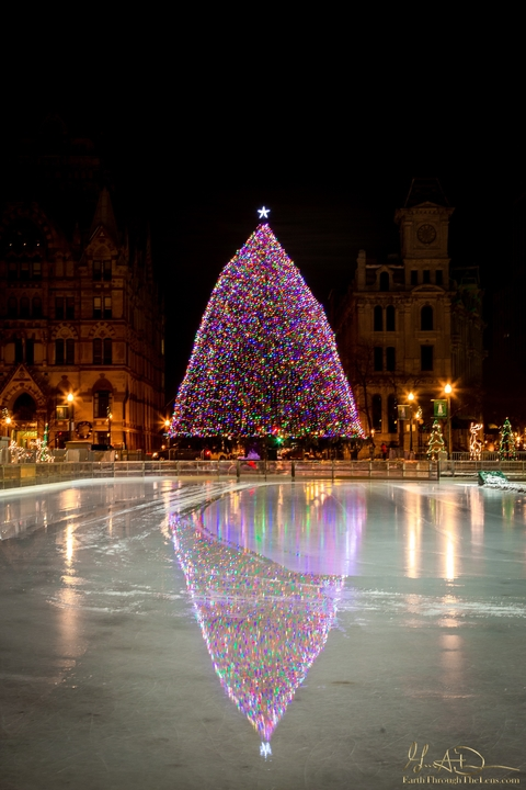 Clinton Square Christmas Tree